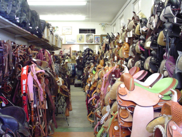Sue's Saddles